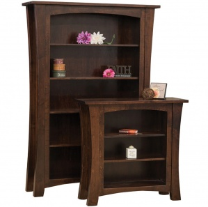 Fair Park Amish Bookcase